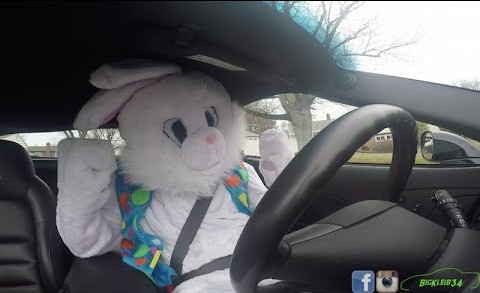 Easter Bunny SLAMS GEARS in 600hp Corvette Z06!